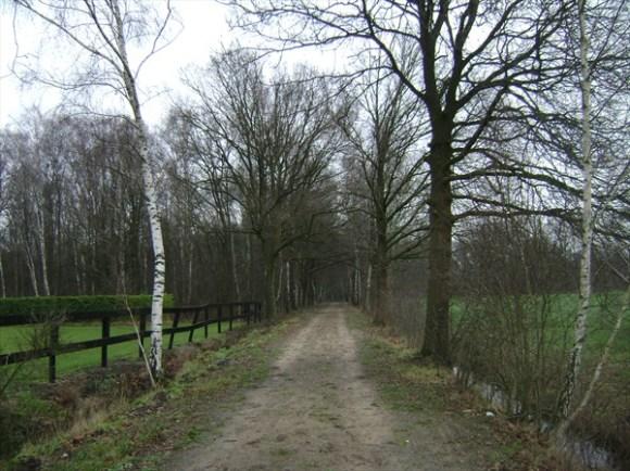 brechtseheide3
