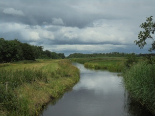 Water doorkruist het weiland