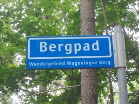 Bergpad'wandelpad over de Wageningse Berg